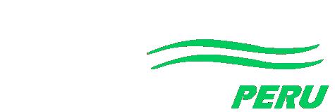 logo paginas webs peru